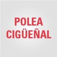 Polea Cigüeñal